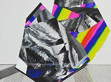 + IMAGE – NOSE – PHENOMENON OF VISUAL AMBIGUITY
